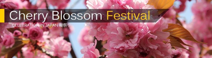Click here to read Sakura Matsuri