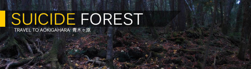 Click here to read Suicide Forest