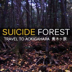 Aokigahara – Suicide Forest – Mount...
