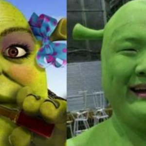 Japanese shrek cosplayer...